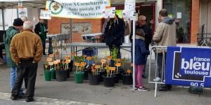 marché aux fleurs 24.04.2016 (23)